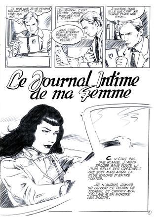 Le Journal Intime de ma Femme par Alain Fretet