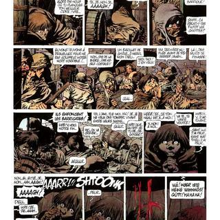 Chroniques Barbares 1 La Fureur des Vikings par Jean-Yves Mitton