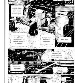Le Jardin De L'Araignee 1 par Michael Manning